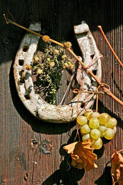 Put vina kroz istoriju Srbije Negotin