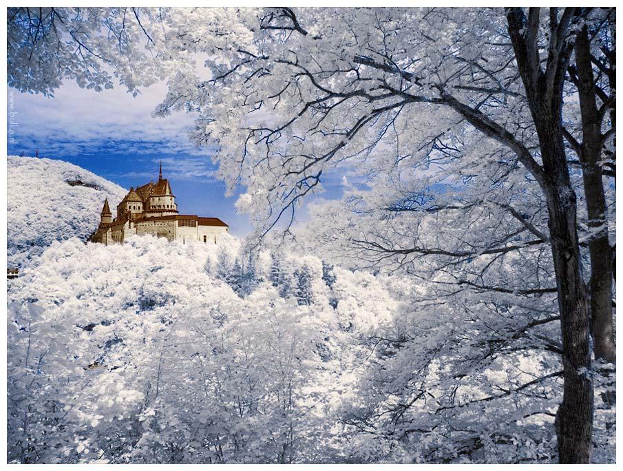 Зима... Морозная и снежная, для кого-то долгожданная, а кем-то не очень любимая, но бесспорно – прекрасная.  - Страница 2 30