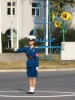 Sunflowers and Trafficgirls Aib2_510