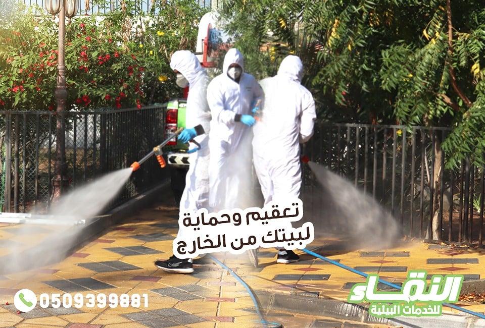 مكافحة حشرات راس الخيمة , شركات مبيدات راس الخيمة , النقاء لمكافحة الحشرات 0509399881 390551alsh3er