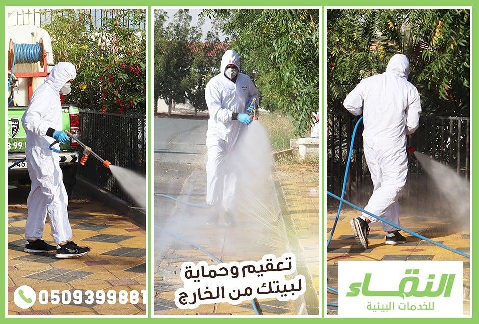 مكافحة حشرات راس الخيمة , شركات مبيدات راس الخيمة , النقاء لمكافحة الحشرات 0509399881 390552alsh3er