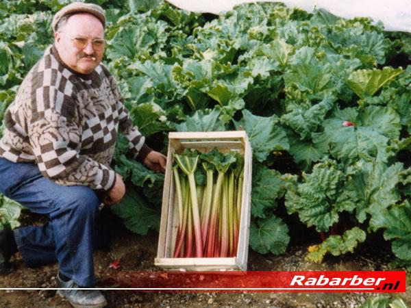 Nešto zanimljivo za naše zdravlje Rab005