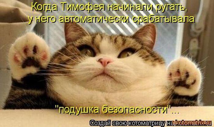 1327643842_luchshie-kotomatricy-nedeli-50-foto_40.jpg