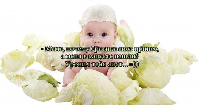 Забавные улыбашки. 1345091355_citata_34