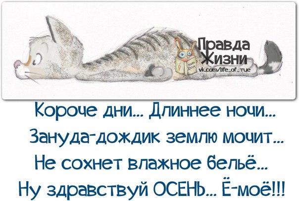Попкорн (общество, политика) - Том XXVI - Страница 33 1380249635_frazochki-11