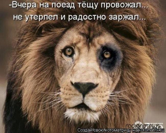 1385887727_mysli-vsluh-6.jpg