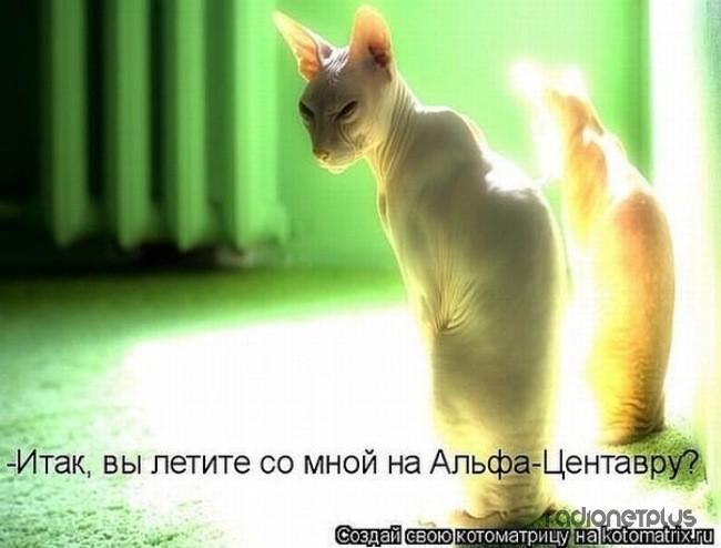 1385887771_mysli-vsluh-4.jpg