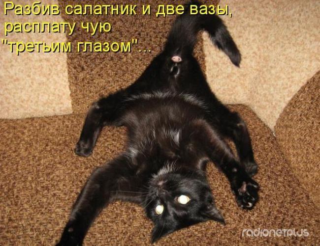 1385887794_mysli-vsluh-9.jpg