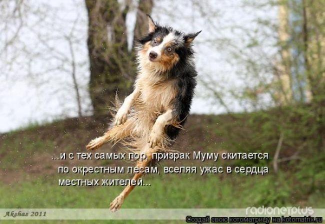 1385887812_mysli-vsluh-13.jpg