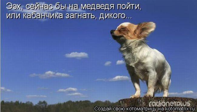1385887823_mysli-vsluh-12.jpg