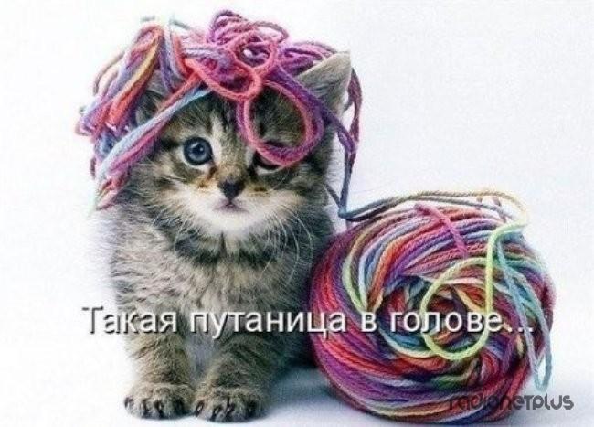 1385887880_mysli-vsluh-20.jpg