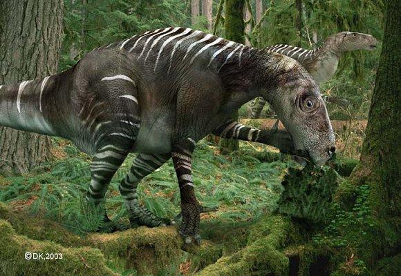 Les animaux - Page 4 Iguanodon