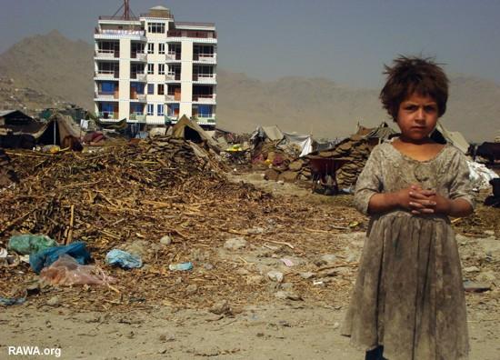 Afghanistan: un lionceau installé sur la terrasse d'un riche Kabul_sep07_38