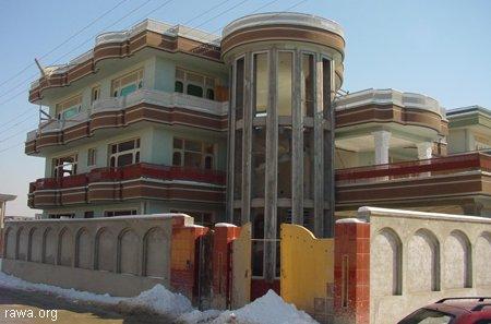 Afghanistan: un lionceau installé sur la terrasse d'un riche Kab_build