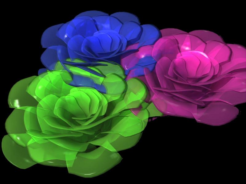 Urime 8 Marsin-dita nderkombetare e grave Blomster