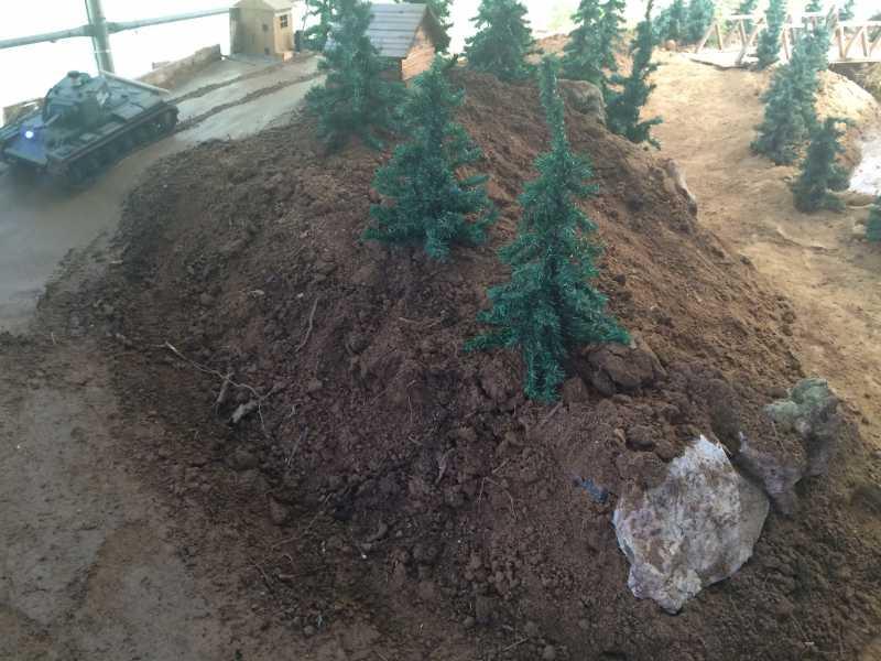 24 agosto 2014 aggiornamenti del campo di Miradolo IMG_6915