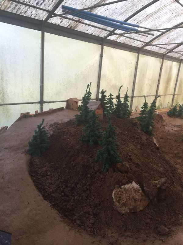 24 agosto 2014 aggiornamenti del campo di Miradolo IMG_6936