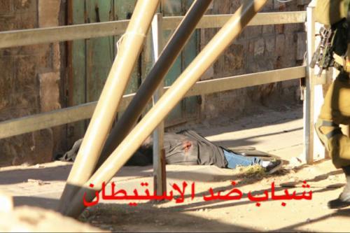 Palestina: Violencia ejercida por Israel en la ocupación. Respuestas y acciones militares palestinas. - Página 11 203742_2