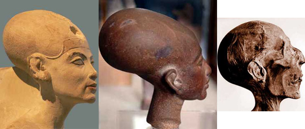 recent archaeological discoveries 11175skulls