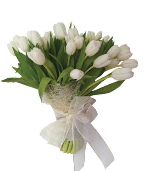 Onomastici e compleanni - - Pagina 5 Bouquet-di-tulipani-bianchi