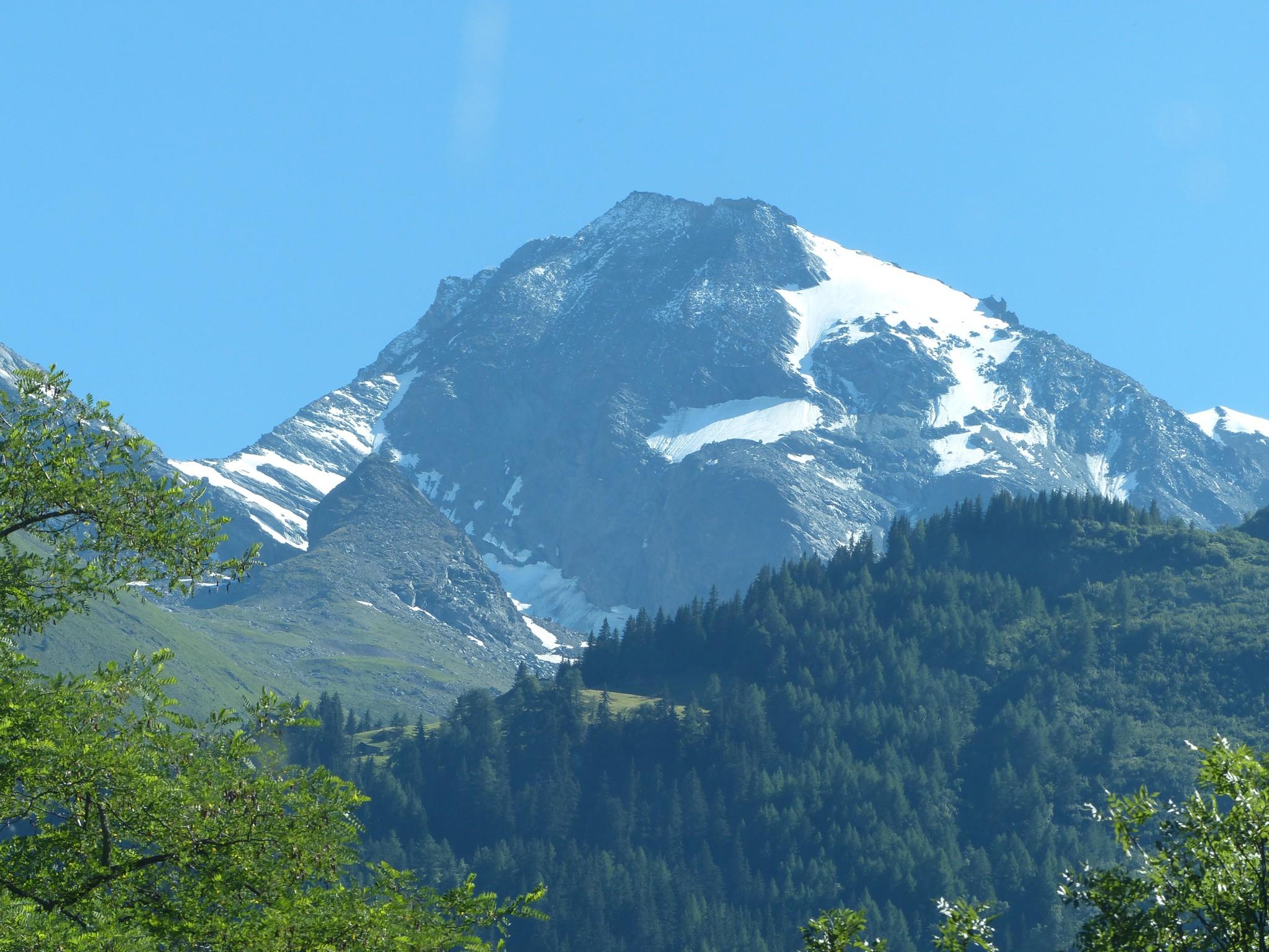 Quelques photos estivales, au pays des marmottes... Gallery_1137_2628_1675485