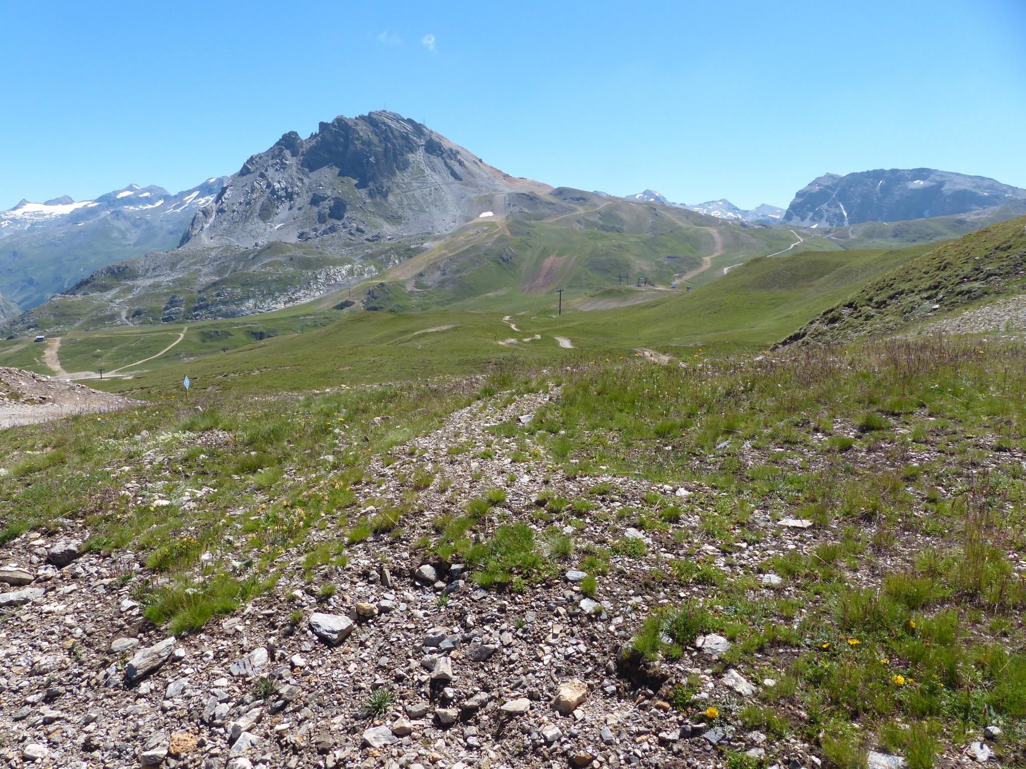 Quelques photos estivales, au pays des marmottes... Gallery_1137_2628_2512808
