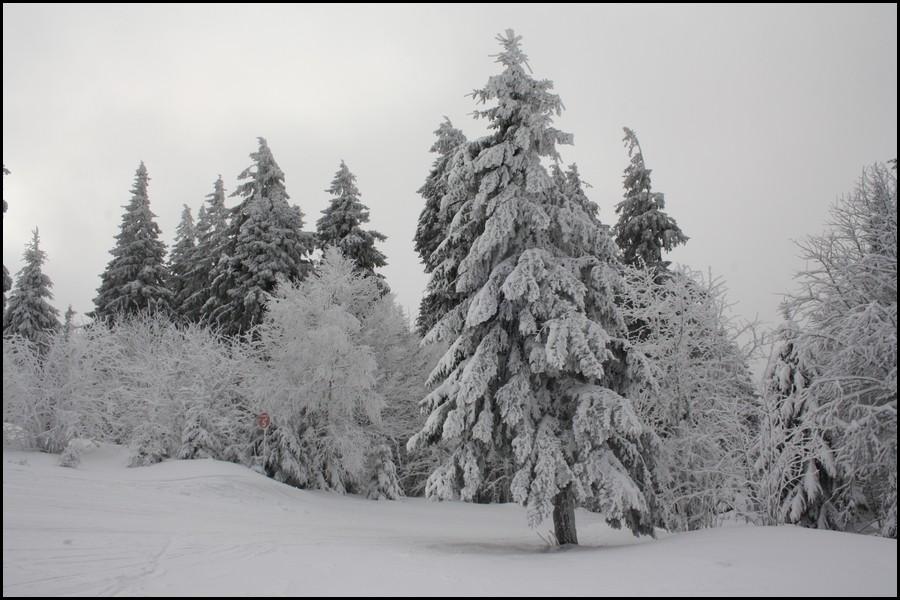 Une journée de ski au LAC-BLANC (Haut-Rhin) Gallery_6029_4327_170787