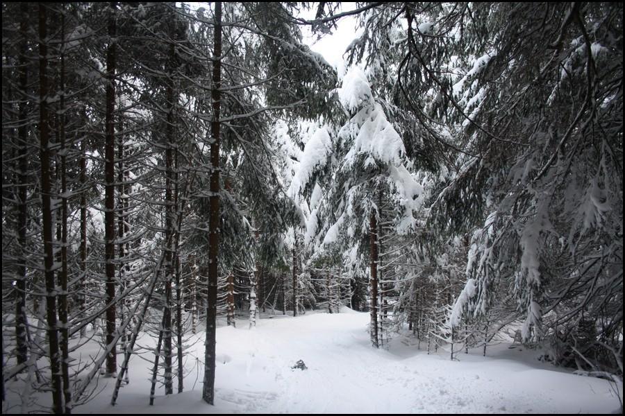Une journée de ski au LAC-BLANC (Haut-Rhin) Gallery_6029_4327_206101