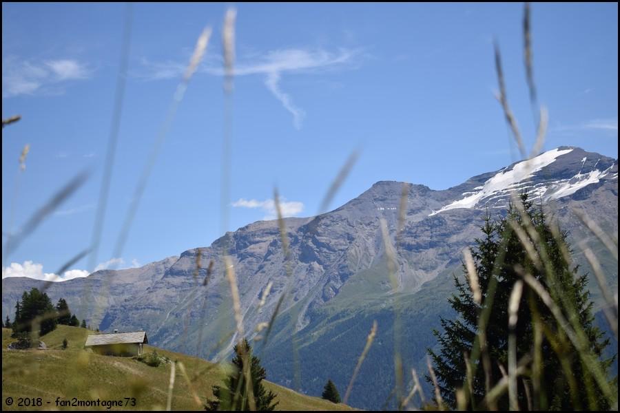 Tour de 6 jours entre Haute Maurienne et Haute Tarentaise  Gallery_6029_5096_129518