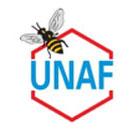 Les abeilles, témoins du bon état de notre environnement, disparaissent massivement Unaf-2