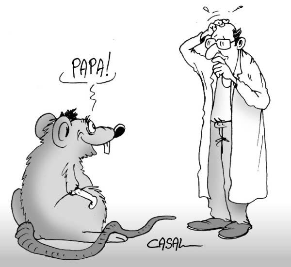 CHIMERES Genetique