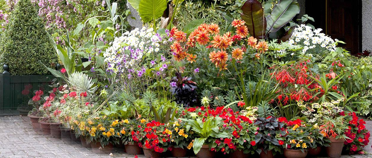 RHS Tatton Park Flower show Inwood-summer-pots_940x400
