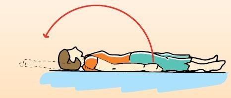 تمارين لآلم الضهر..........Exercices pour calmer les douleurs. 235