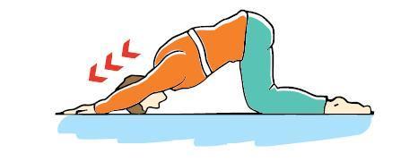 تمارين لآلم الضهر..........Exercices pour calmer les douleurs. 236