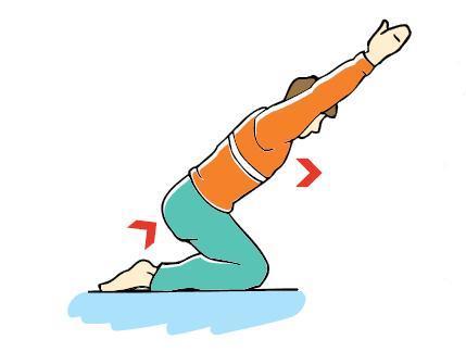 تمارين لآلم الضهر..........Exercices pour calmer les douleurs. 243
