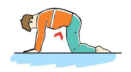 تمارين لآلم الضهر..........Exercices pour calmer les douleurs. 245