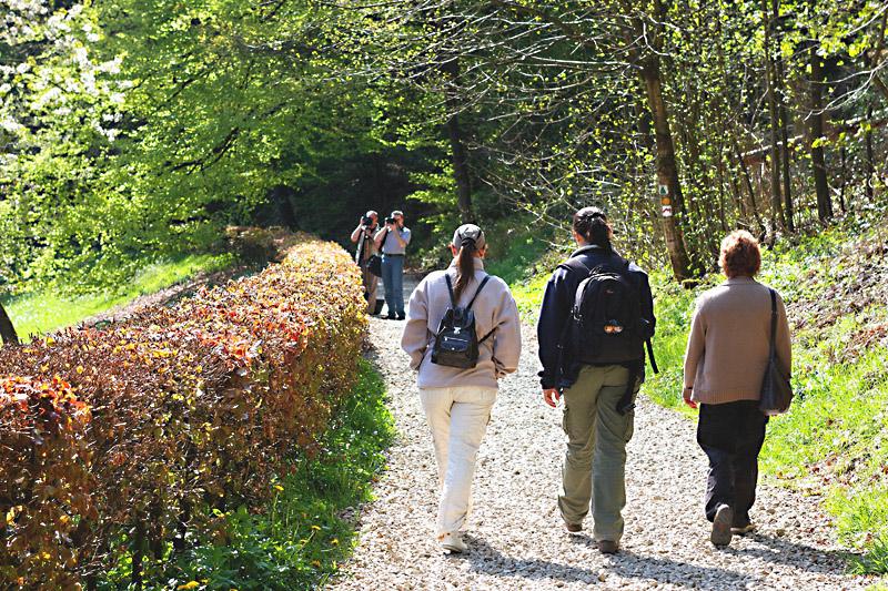 Wk photo macro, traitement, architecture à Luxembourg le 3 et 4 Mai 2008 - Les photos - Page 4 IMG_1143_RAW