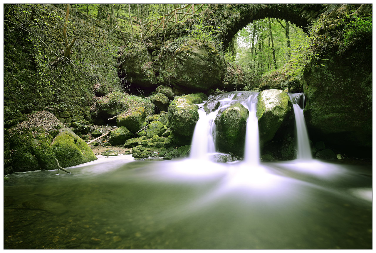 Sortie photo dans la petite suisse Luxembourgeoise ce samedi 26 avril : Les photos 800_3194