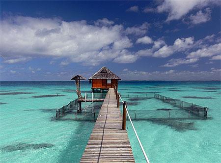 IA ORANA  Bonjour de Tahiti  Pt45400