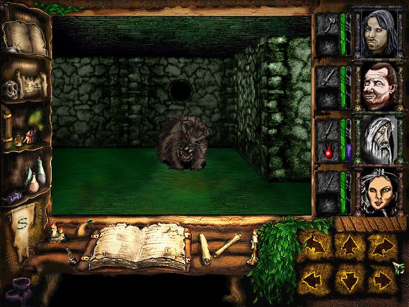 RPG old school : Dungeon Master, Eye Of Beholder, Grimrock.. - Page 3 Cardhalia1