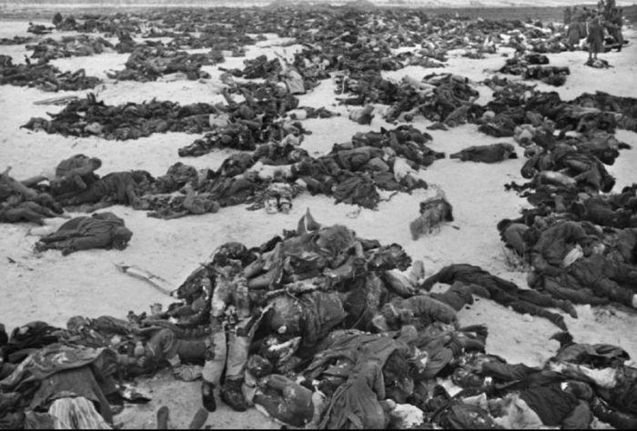 Сталинград: великая победа великой войны! 1273231387_stalingrad_24