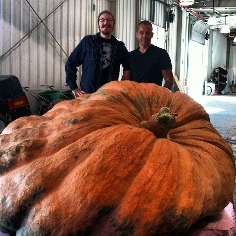 Идеи для Хэллоуина    - Страница 3 1351244885_zombie-pumpkin-3