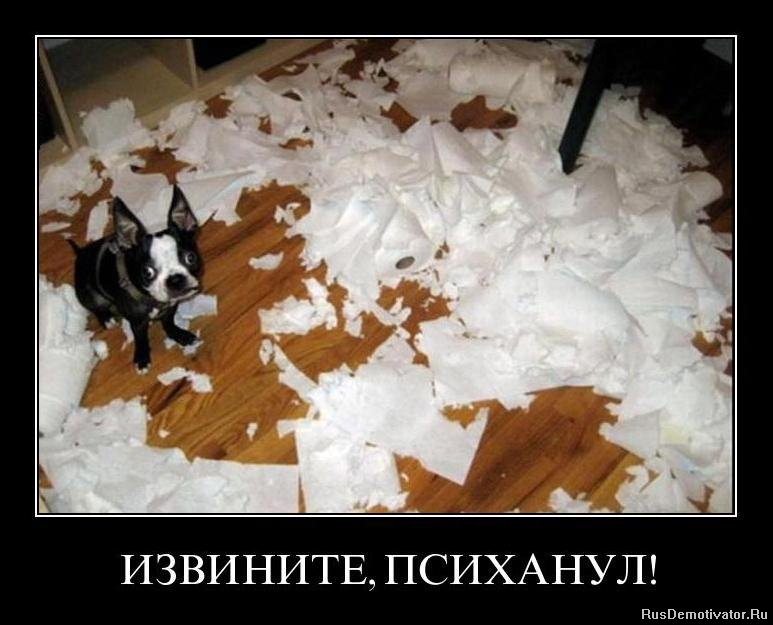 """Собака """"разносит"""" квартиру! SOS!!!!!!!! - Страница 2 1327872501_62dhn2wrebh4"""