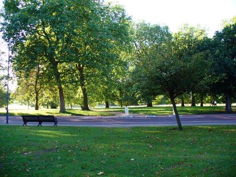 Park nad Niemnem Kolejny-park-do-rewitalizacji