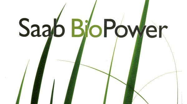 E/RE85 Biopower_grass