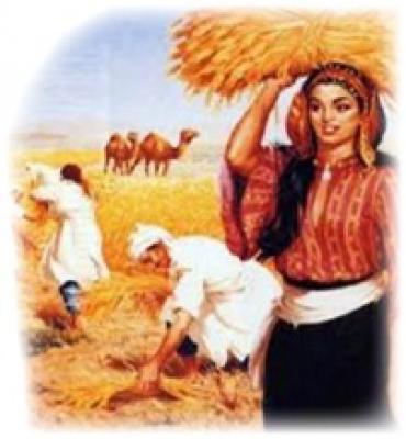 الحرب على الاسلام حرب على الله والظفر فيها مستحيل 13-12-13-1298826230