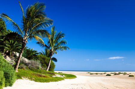 كل ما تريد معرفته عن جزر الكناري  16-10-13_10-09-41-450x299