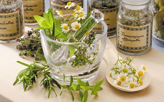 Joyeux anniversaire Arkania ! Le-top-5-des-plantes-medicinales-pour-soigner-nos-enfants-700x434