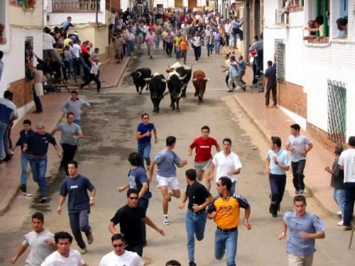 Videos  y fotos de nuestros lugares de origen o residencia Fiestas2EncierrosdePascuamayo.jpg_749535193