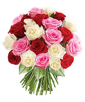 Anniversaire Lyanh Bouquet-roses-romance.l_1